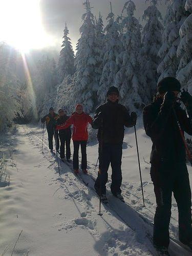Biegówki - sport nie tylko dla narciarzy!